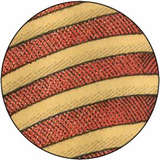 Natlacen (Nº16)