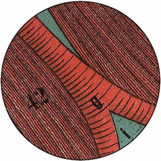 Natlacen (Nº15)