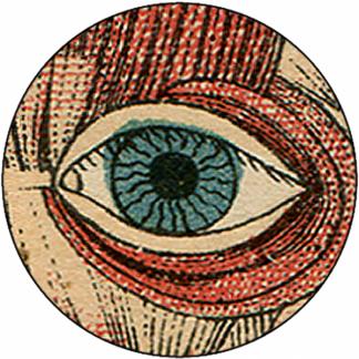 Natlacen (Nº24)