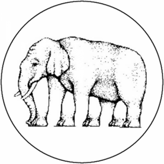 Eléphant (à 5 pattes)