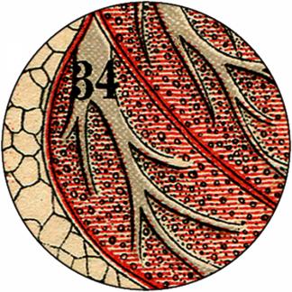 Natlacen (Nº10)