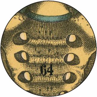 Natlacen (Nº13)