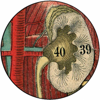 Natlacen (Nº22)