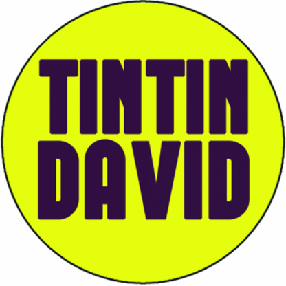 Tintin David